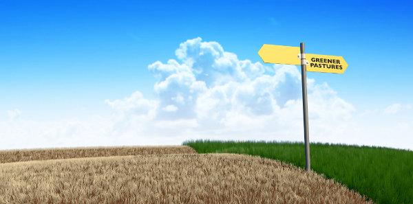 greener-pastures-small.jpg